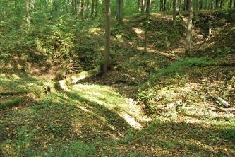 Projektowany rezerwat