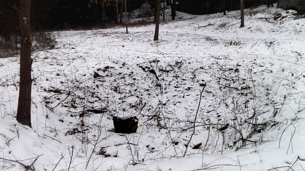 Skaly-w-Rudzie-odsloniete-pomnik-przyrody-zima-08.jpg