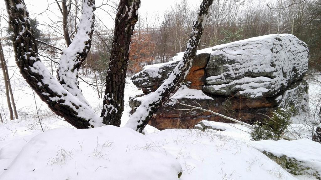 Skaly-w-Rudzie-odsloniete-pomnik-przyrody-zima-12.jpg