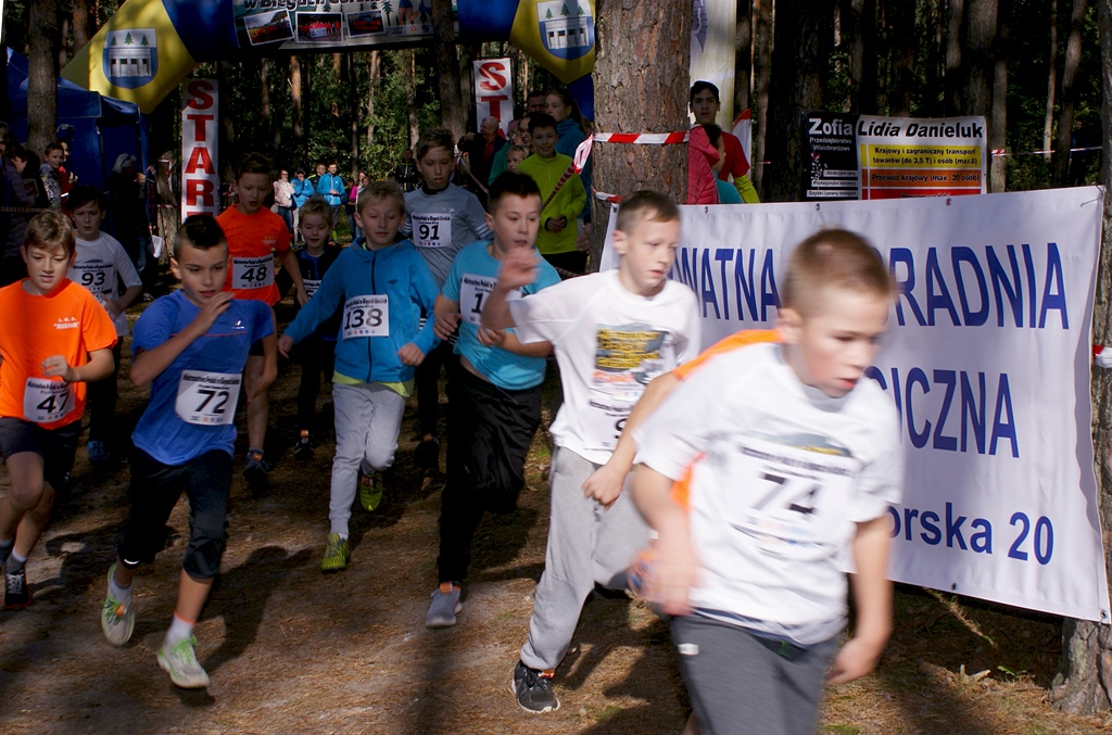 mistrzostwa-biegi-gorskie-skaly-krynki-gmina-brody-lkb-rudnik-11.JPG