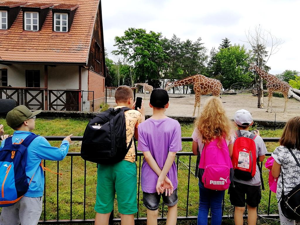 zielona-szkola-krynki-IMG_20190607_141307_BURST001_COVER.jpg
