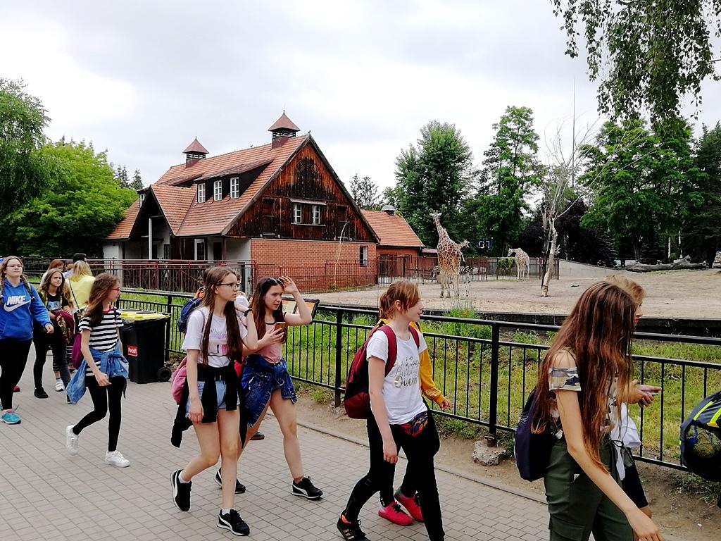 zielona-szkola-krynki-IMG_20190607_141432.jpg